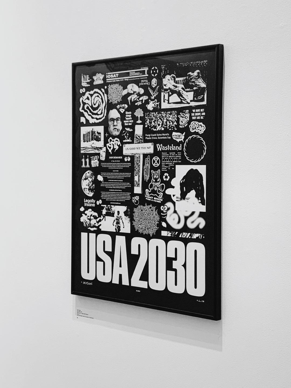 USA2030-(Framed)